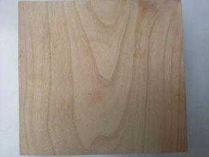 древесина павловния